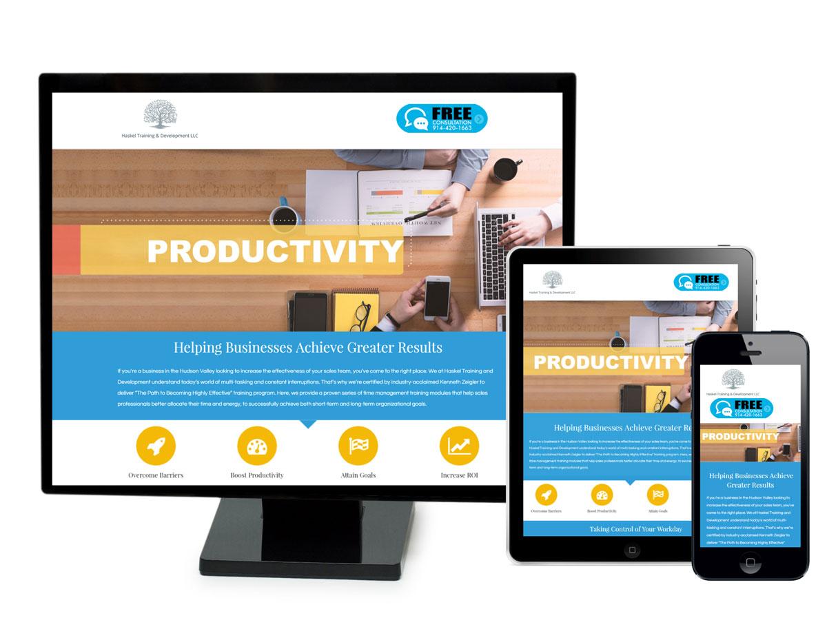 Haskel Training & Development Website Design Porfolio